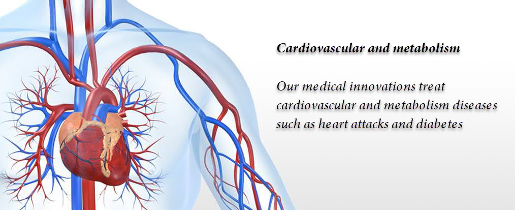 Cardiovascular and metabolism